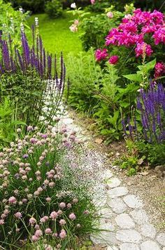 Little pathway through flowers.