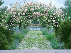French inspired garden