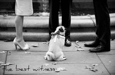 The best witness.