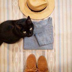 And of course my cat photobombs #catphotobomb #kittycat #grainlinestudio #hemlocktee #freepattern #sewing #imademyclothes #slowfashion by harunawilson