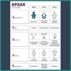 Image Result For Apgar Score