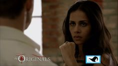 Gia & Elijah Sparring Scene on The Originals ~ I'm this close to signing up for some martial arts class :o) Martial Arts, Scene, The Originals, Gifs, Quote, Quotation, Qoutes, Martial Art, Gifts