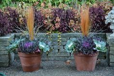 Fall Planters with Kale by Deborah Silver