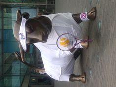 WPR Agency dresses the Bullring's Bull for client Aegon Classic
