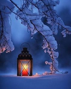 Winter Solstice wallpaper videos A Lovely Winter Evening Christmas Scenes, Winter Christmas, Christmas Sayings, Christmas Images, Merry Christmas, Winter Photography, Nature Photography, Makeup Photography, Portrait Photography
