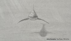 Cómo dibujar un tiburón - Boceto a lápiz #arte #dibujo #ArteDivierte #tiburón #tutorial #animales #Patreon #artistleonardo #Tutto3 #LeonardoPereznieto Haz clíck aquí para ver mi libro: http://www.artistleonardo.com/#!ebooks/cwpc