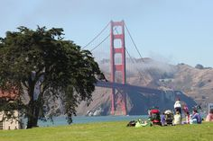 Crissy Field is a large, open area with a great view of the Golden Gate Bridge.