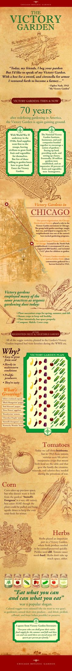 An infographic about Victory Gardens from the Chicago Botanic Garden