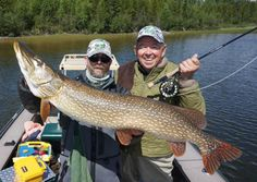 Photos: Mr. G's 135 Inches of Northern Pike - Orvis News