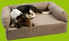"Luxury Foam Dog Bed -  Get fido off your couch an onto his own with this comfy Luxury Foam Dog Bed. Made with 7"" of foam padding, the Luxury Foam Dog Bed is the ultimate in pet bedding and lounging."