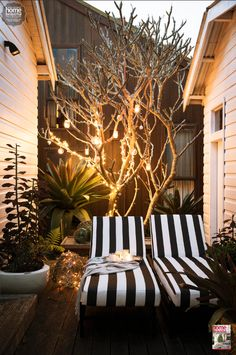 Twinkling lights and striped chairs are great for a warm-weather Christmas outside.
