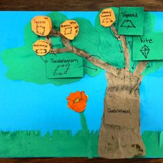 Quadrilateral Tree. Great project for students that shows the various branches of quadrilateral shapes. Each shape is drawn on a flap with a definition underneath and are arranged in way to show connections and differences. Make with construction paper, scissors, glue, and markers.