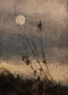 """""""The melancholy river bears us on. When the moon comes through the trailing willow boughs, I see your face, I hear your voice and the bird singing as we pass the osier bed. What are you whispering? Sorrow, sorrow. Joy, joy. Woven together, like reeds in moonlight."""" ~ Virginia Woolf {Last Light by Ron Jones}"""