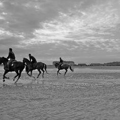 Chevaux sur la plage de Deauville