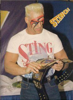 WCW World Heavyweight Champion Sting
