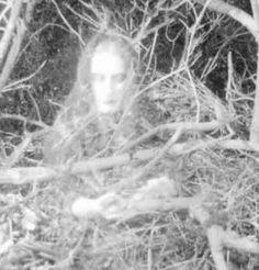 .#ghosts #spirits #haunted