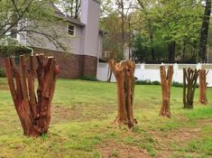 Southerners are fixated on crepe myrtles -- mainly because they butchered so many this winter and now want them fixed. Following Crepe Murder 2015, scores of pitiful emails from crepe criminals nee...