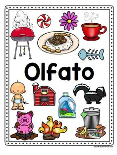Bilingual (English and Spanish) Five Senses Posters-- perfect for your preschool, Kindergarten or first grade classroom to use during a science or health unit. Could use these as an anchor chart or with worksheets and activities. Preschool Spanish, Spanish Classroom, Preschool Kindergarten, Bilingual Kindergarten, Preschool Ideas, Spanish Basics, Spanish Lessons, Spanish Games, Spanish Activities