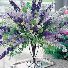 Double-flowered, ultra disease-resistant Larkspur Mix of picotees, stripes, and solids. Grown for the cutflower market and now available to home gardeners. Great for northern and other short-season gardens, it finishes quick!