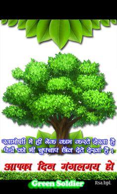 Save Tree Save Earth, Herbs, Vegetables, Green, Herb, Vegetable Recipes, Veggies, Medicinal Plants