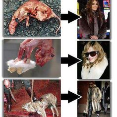 Celebrity Scum Bags!!!  Boycott them and what they stand for.