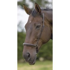 Shires Equestrian Dropped Noseband and English Bridle Parts and Accessories | EQUESTRIAN COLLECTIONS.COM