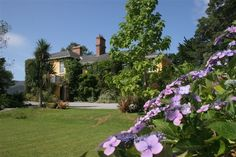 Romantic and Historic Carrig Country House Hotel is located on Carragh Lake on the famous Ring of Kerry driving route in Ireland. Country House Hotels, Blue Books, Spring Time, Ireland, Dolores Park, Sidewalk, Romantic, Garden, Travel