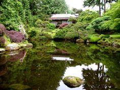 Bing - My saves Garden Waterfall, Seattle Fashion, Bainbridge Island, Downtown Seattle, Easy Day, Going Home, Washington State, Day Trip, Pacific Northwest