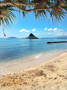 Kualoa Beach Park on the island of Oahu. #hawaiian #lifestyle #tropical