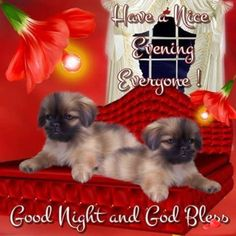 Good Morning Wishes With Prayers Blessings And Quotes. Good Morning Wishes With Prayers Blessings And Quotes New Good Night Images, Cute Good Morning Images, Good Night Love Quotes, Good Night I Love You, Good Night Prayer, Good Night Everyone, Good Night Blessings, Good Night Gif, Good Night Messages