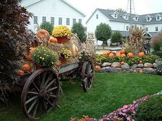 Google Image Result for http://aroundindy.files.wordpress.com/2011/09/shipshewana-autumn-display.jpg%3Fw%3D600