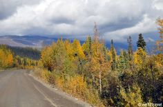 Fall foliage on the Yukon's Dempster Highway: one of the most epic drives in North America