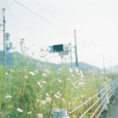 125 by kajico**, via Flickr
