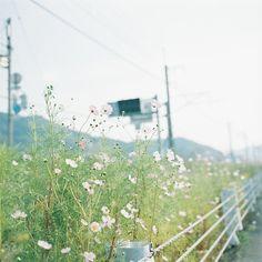 125 by kajico**, via Flickr