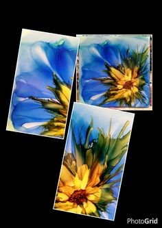 Flower in alcohol ink on 6x6 ceramic tile by Tina. Close ups  to see inks beautiful color mix.  Love the Adirondack ink