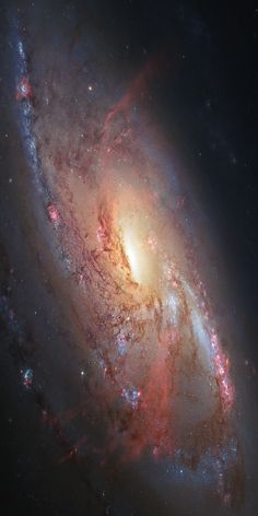 Hubble view of the spiral galaxy Messier 106 | The Elevated Movement Happy 4th of July!