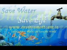 Saving Fresh Water can Save the World - EnvironmentCare.in