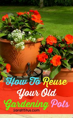Do you have old flower pots sitting around the yard with dead plants in them or old tired looking soil and don't want to throw the pot away? Here's how to reuse your old gardening pots.