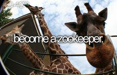Become A Zookeeper because the giraffes told you to.