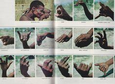 Hand-signed communiqués of Bushmen warriors on the hunt.