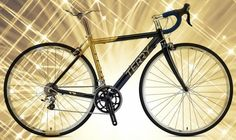 Terry Tailwind #bikesdirect.com #Terry