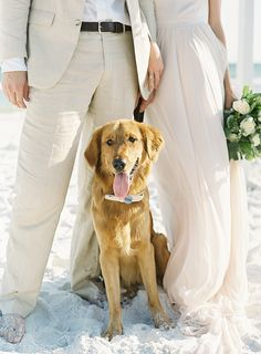 florida bride and groom beach wedding dog  | Photography: Mint Photography