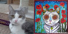 RobiniArt Limpet the Cat before and after