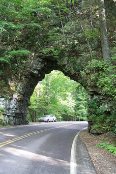 Cherokee National Forest, TN
