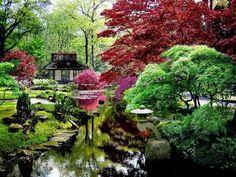jardin japones , Bs As. One of my favorite places, 100000000 koi fish all colors Asian Garden, The Pleasure Garden, Architectural Plants, Zen Garden Design, Garden Waterfall, Garden Fountains, Toulouse, Garden Projects, Nice View