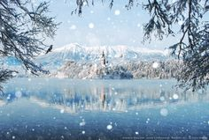 Winter Wonderland by Peter From on 500px