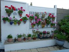 Repurposed Iron Fence Panel ~ mounted on patio wall or fence - great for displaying potted plants or training vining plants - (via growsonyou)