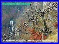 Nacedero Río Urederra Baquedano en  Navarra la Ruta de las Cascadas de Baquedano  el Paraíso del Agua      Desde el parking de Baquedano cogeremos a la izda. una calle para dirigirnos hacia la iglesia. Al lado de la iglesia hay una fuente que baja desde el paraje de Aseki.
