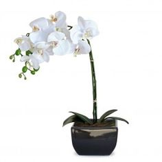 Arranjo de flores artificiais de orquideas 45x20 cm