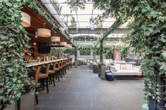 This New, Lush, Outdoor Lounge in Greenwich Is an Instagrammer's Dream